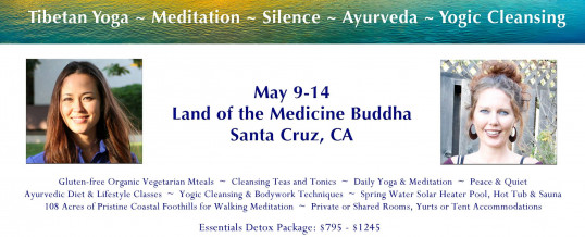 Panchakarma Retreat in Santa Cruz, California